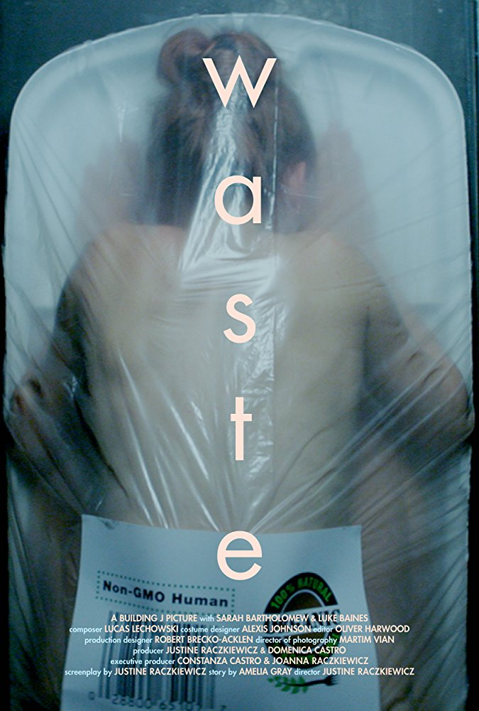 """Film Poster for """"Waste"""""""